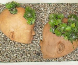 Sassi / Stones
