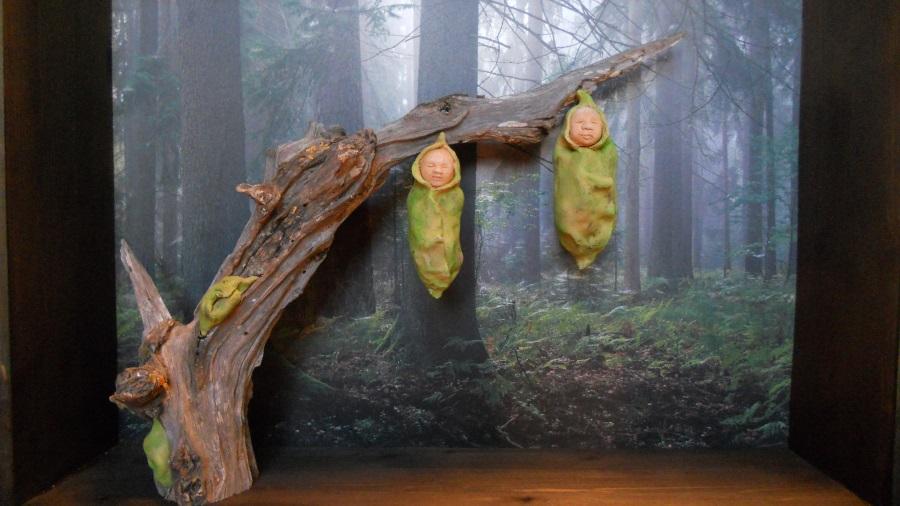 portfolio - Bozzoli Alba nel bosco 2